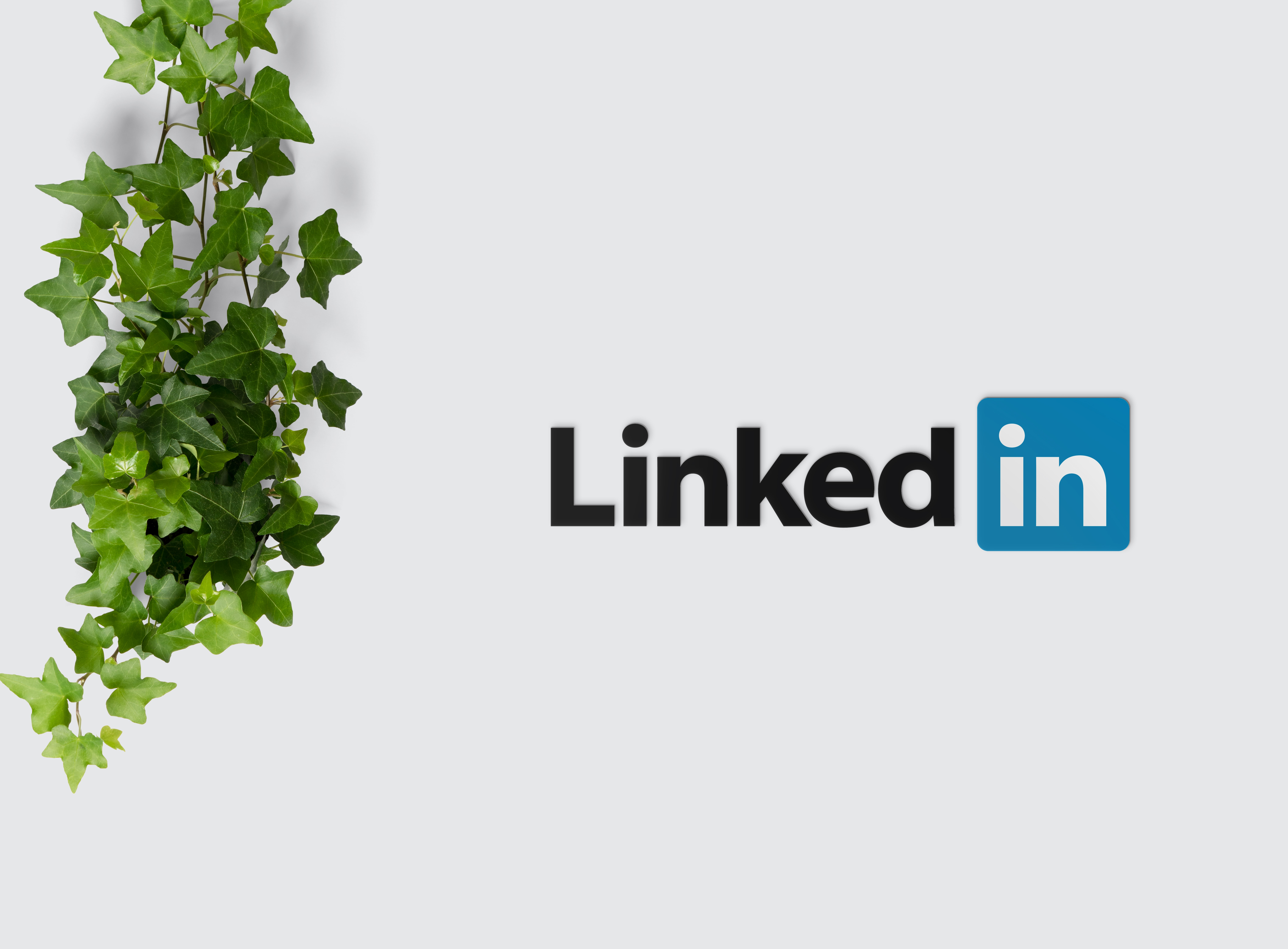 LinkedIn Breach, Does This Affect You?